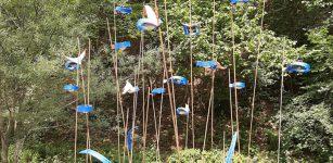 La Guida - Il bosco delle cicale, l'arte sonora nella natura della valle Stura