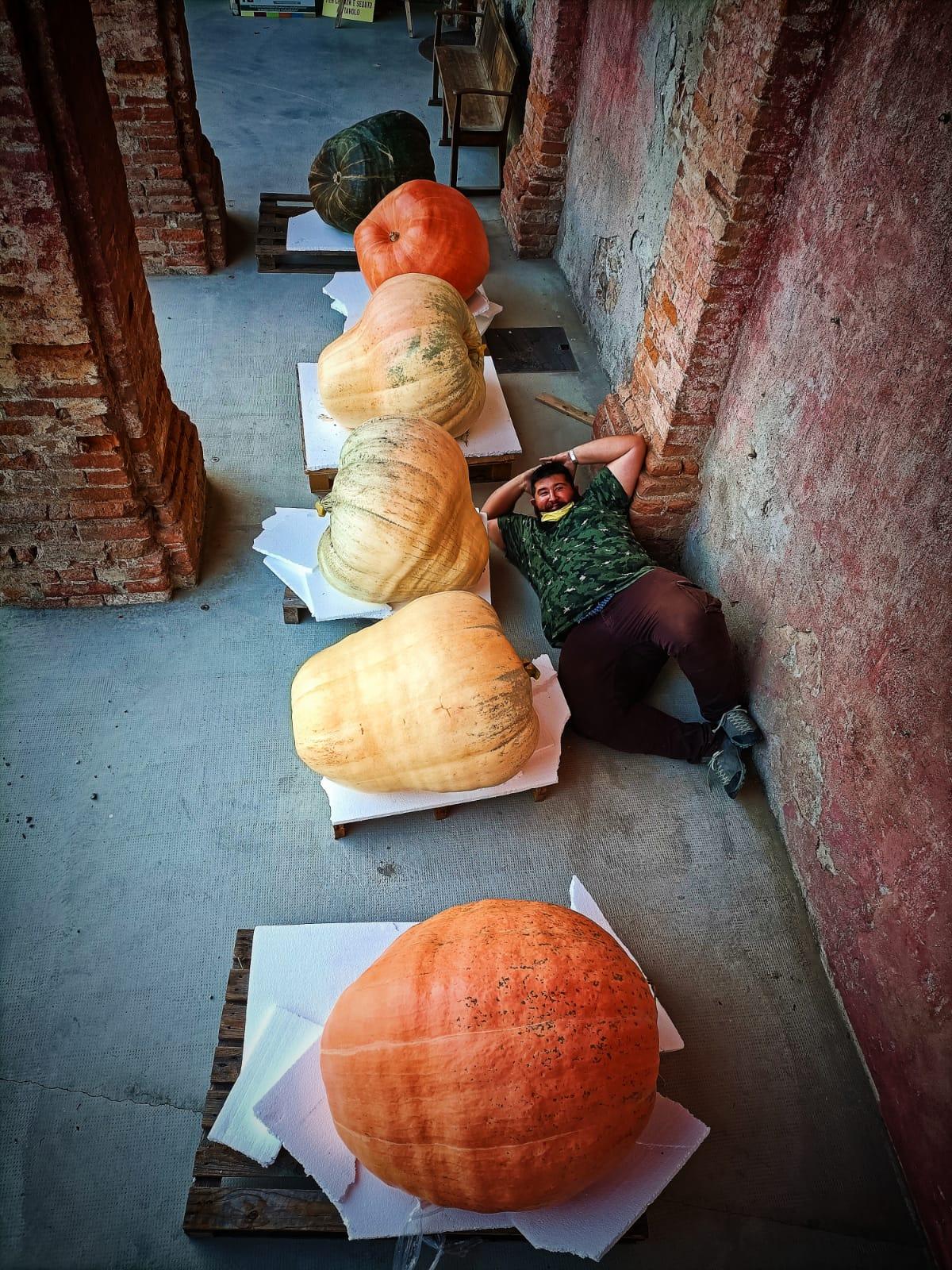 Farigliano - Andrea Bertone e le sei zucche giganti