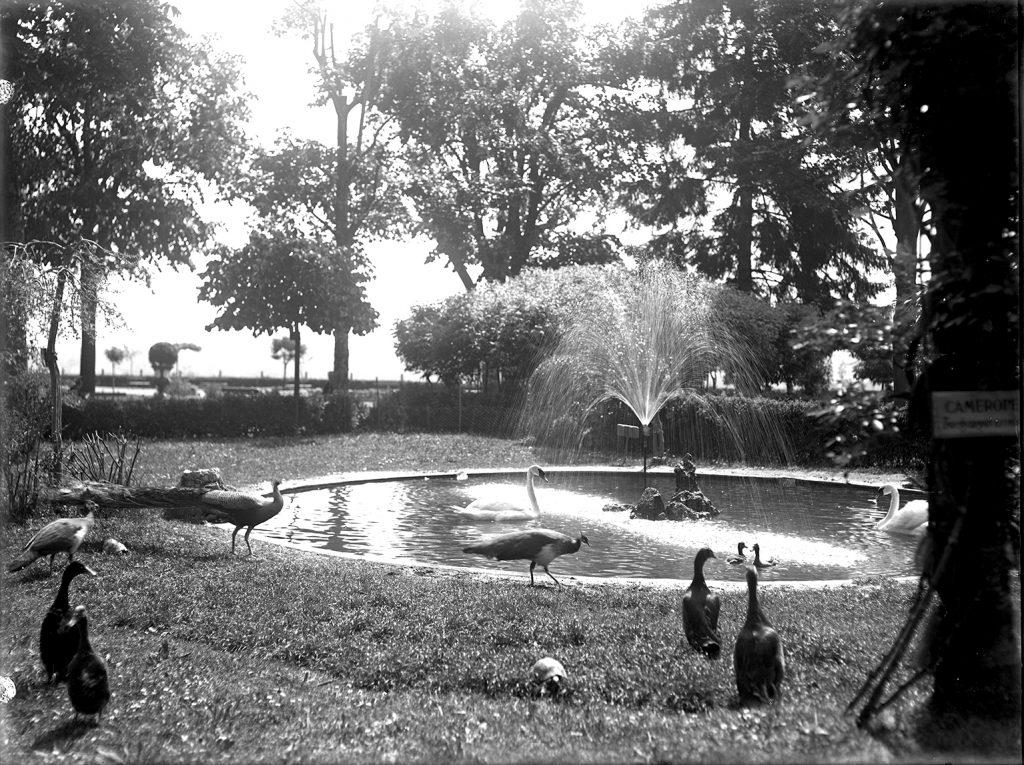 Giardini Fresia - Archivio Museo Civico di _scatola 52g 403