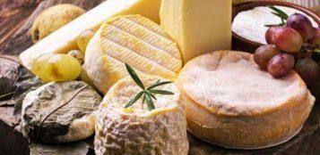 La Guida - La due giorni dei formaggi all'Abbazia di Staffarda