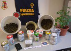 La Guida - Deteneva in casa 1,5 kg di marijuana: arrestato